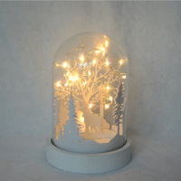 Wholesale Decorative Clear Blown Glass Jars Glass Dome Cloches with LED lights