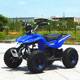 New style four wheels Mini electric ATV of 36V 1000W electric quad ATV