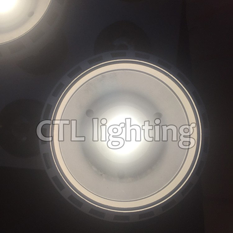 China LED Light Factory track light COB led 30w Par lights CTL1186
