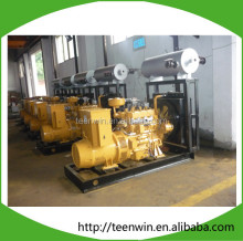 Hot sale biogas gas generator 3kw to 500kw OEM price