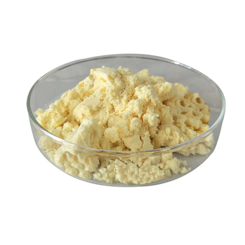 High Pure Organic Ginger Extract Powder