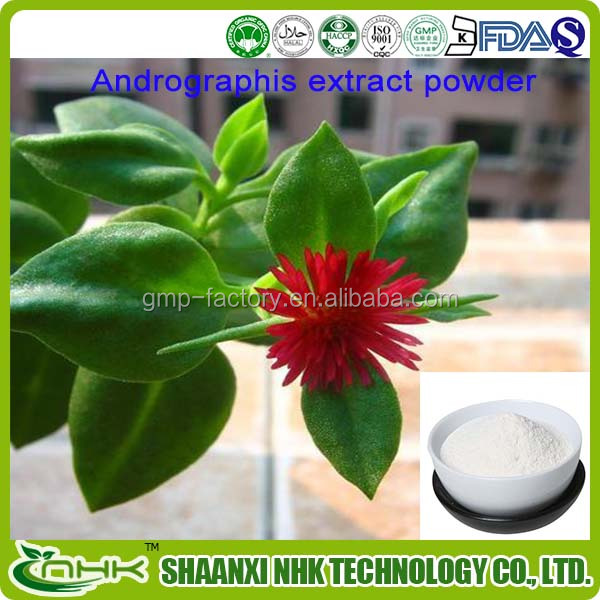 Chinese supply the best price for Treat Flu Andrographolide 99%