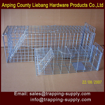 coyote rat fox cat mouse cage trap defender live catch humane animal