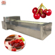 Hawthorn apricot olive Pitting Machine/ Peach cherry Pit Remove Machine