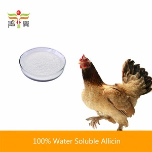 Poultry Feed Additive 2%~98% Organic Soluble Garlic Powder