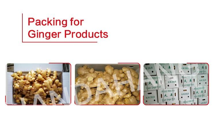 100% 純粋なジンジャーパウダー、赤ショウガパウダー、分割ドライジンジャー輸出価格