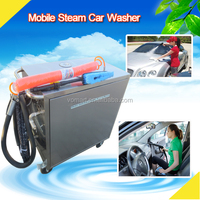 dry and wet steam car wash machine price/vapor steam cleaning for cars
