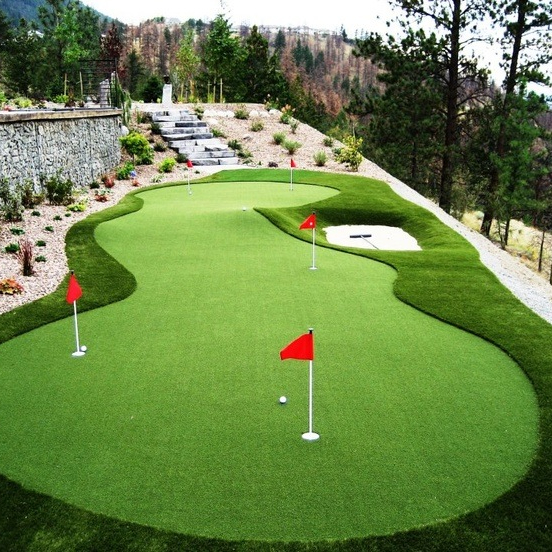 Sport Synthetic Turf Gr Golf Putting Green Artificial