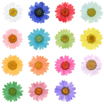 Colorful scrapbook paper flowers wholesalediy paper flowers c033 colorful scrapbook paper flowers wholesale diy paper flowers c033 mightylinksfo
