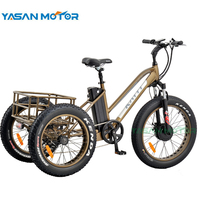 48V 500W 4.0 Inch lithium battery 3 wheel fat tire cargo electric bike for adults
