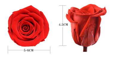 Yunnan Fábrica preço de venda Quente flores preservadas preservada subiu decoração com flores por atacado
