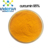 High quality long duration time turmeric root extract  10% 95% 98% curcumin