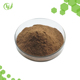 Professional Manufacturer Supply Chaga Extract Powder