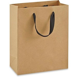 Eco-friendly Brown and White Kraft Paper Bag Luxury Paper Bag Boutique Paper Gift Bag