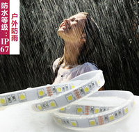 Buy Deep Sea Diamond IP68 underwater led strip light ip68 in China ...