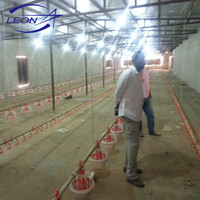 Leon design Complete poultry chicken farm equipment for broiler and breeders