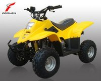 49cc mini atv 49cc atv chinese quad bike 49cc mini atv (FA-C110)