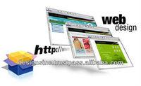 custom website design and web development