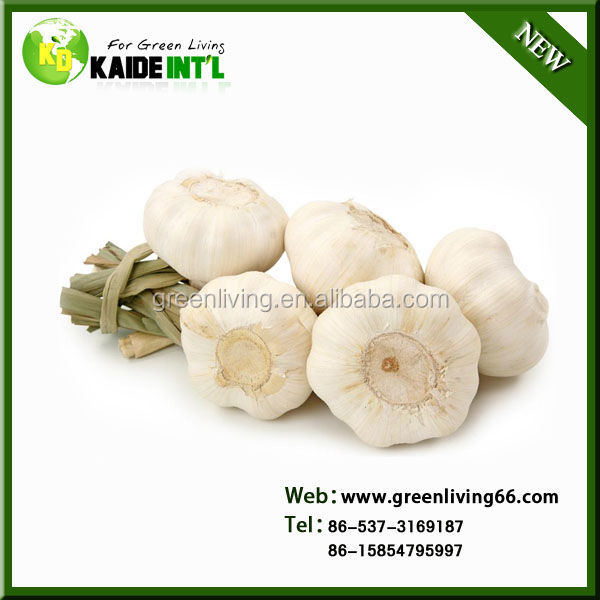 2014 China best dry pure white garlic