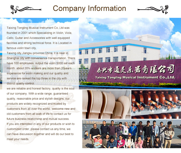 tl001-purple) Chinese Gold Suppliers Violins With Cases Oem Purple ...