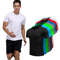 Wholesale custom t shirt sports t-shirts for mens