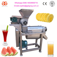 Stainless Steel Carrot Vegetable/Fruit Spiral Juicing Machine