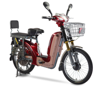 48v 350w cargo loading cheap stealth bomber electric dirt bike for sale