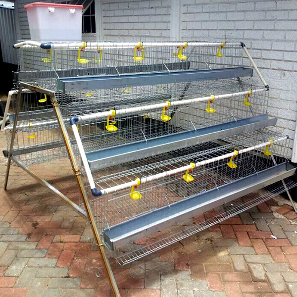 6x3 Tier Layer Manual Cages Electro Galvanized Hot Dipped