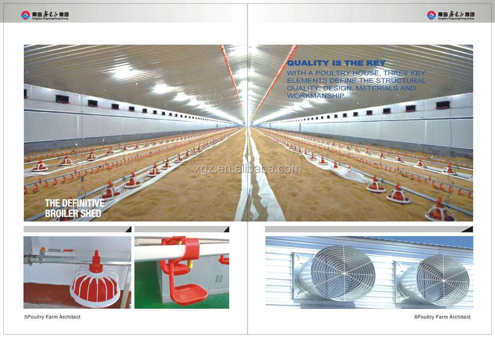 best price automated steel structure chicken barn for sale in africa