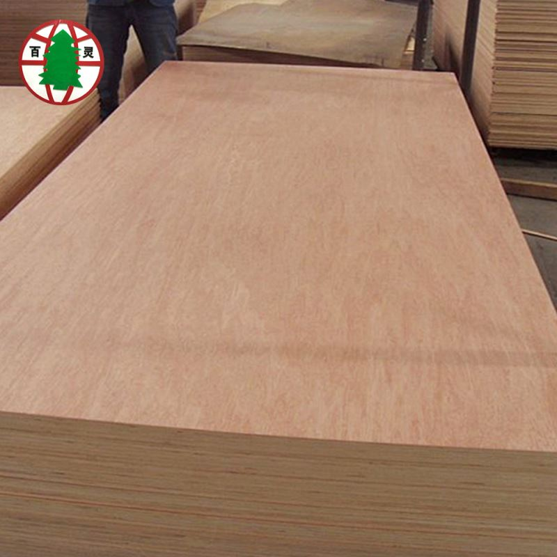Large Quantity Pallet Loading Commercial Bintangor Plywood