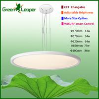 Modern big size dining room led lamp pendant Fixture Chandelier for Dining Room Restaurants Living Room project