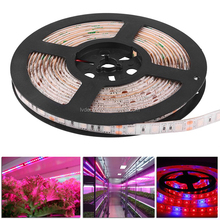 Full Spectrum SMD 2835 5050 4 Red 1 Blue 660nm UV plant grow lighting waterproof led grow light strips for microgreens lettuce