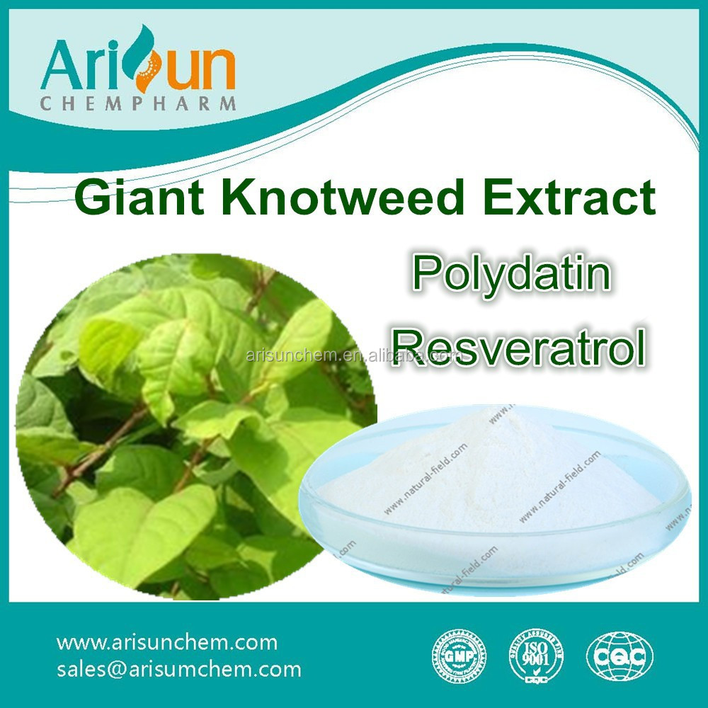 Best Quality 98% Giant Knotweed P.E. Manufacturer