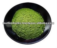 Pure Green Tea / Camellia Sinensis Powder For Skin Care Products