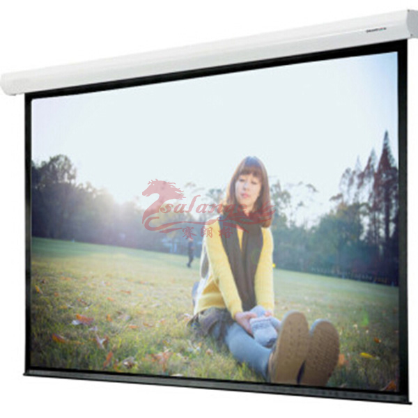 Best Quality Outdoor Electronic Curved Screen with Ratio 1:1 300 inch Projector Curtain White Screen by salange