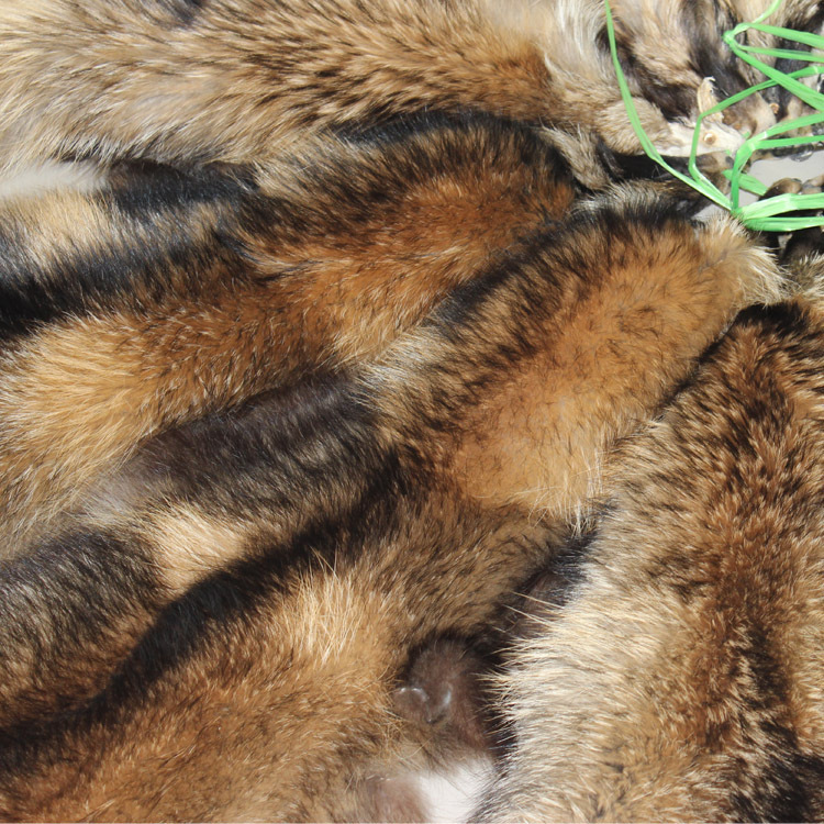 Raw Raccoon Skin Fur Pelts Factory Supply Raccoon Fur