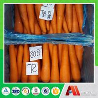 import fresh vegetables carrots