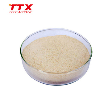 Dairy cattle feed additive mycotoxin toxin binder