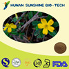 High Quality Healthcare Raw Materials Damiana Leaf Extract Tannic Acid