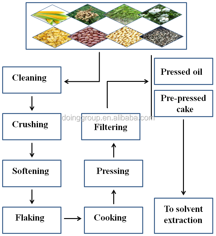 oil seeds pretreatment plant process