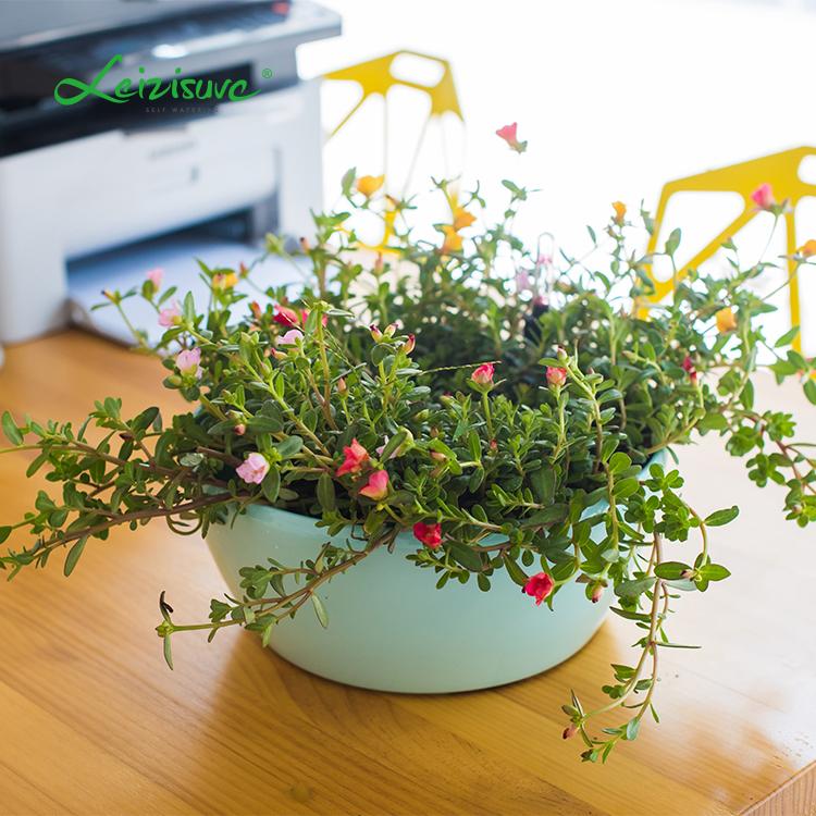 Decoratie Planten Binnen.Home Grown Hydrocultuur Ronde Slimme Narcissuis Potten Binnen Of Buiten Decoratie Plastic Zelf Besproeiing Kunstmatige Planten Buy