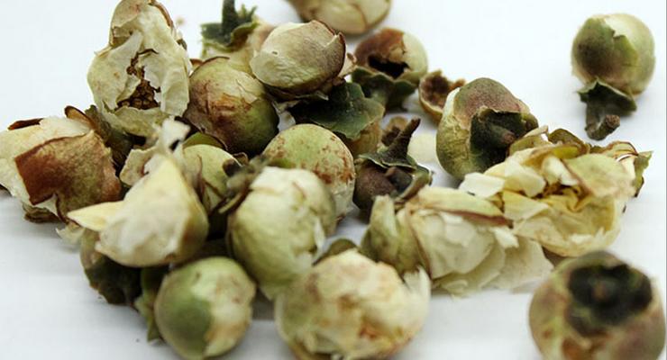 4012 Xuelianhua Organic Chinese Natural Herbal Snow Lotus Herb - 4uTea   4uTea.com