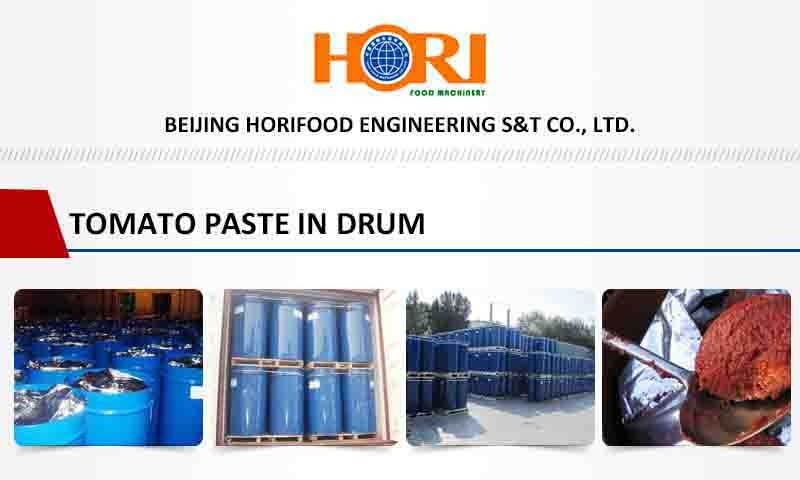Blue drum 3 years shelf life Tomato Paste manufacturer 2016