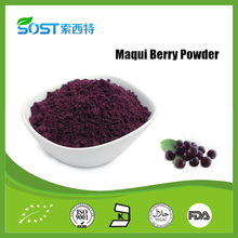 New Product Maqui Berry Extract Anthocyanins