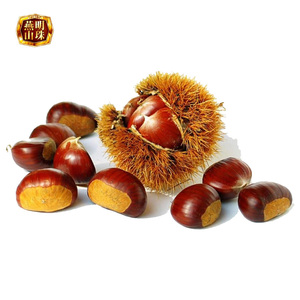 2017 New Crop Organic Sweet Chinese Xinglong Fresh Raw Chestnut