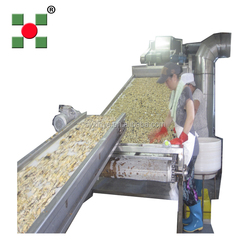 Ginger Dryer/ginger drying dehydrator/ginger processing plant machine