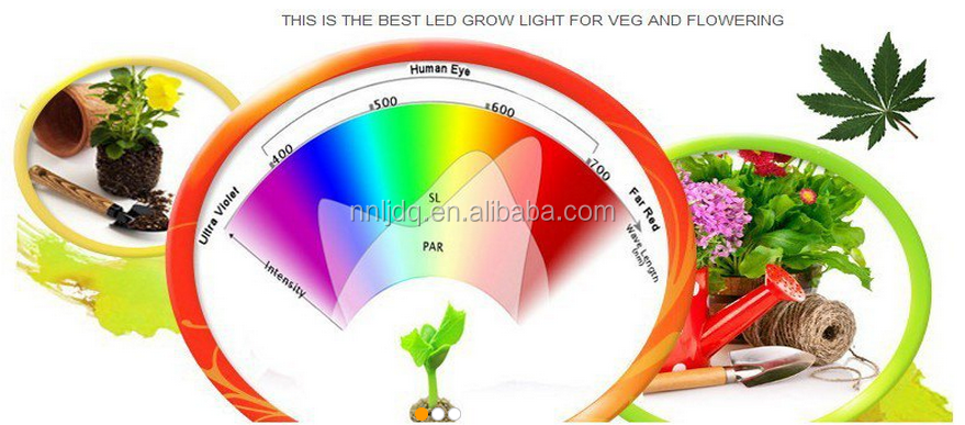 Hydroponic Full Spectrum 300w Panel LED Grow Lights 100Leds 3wattage