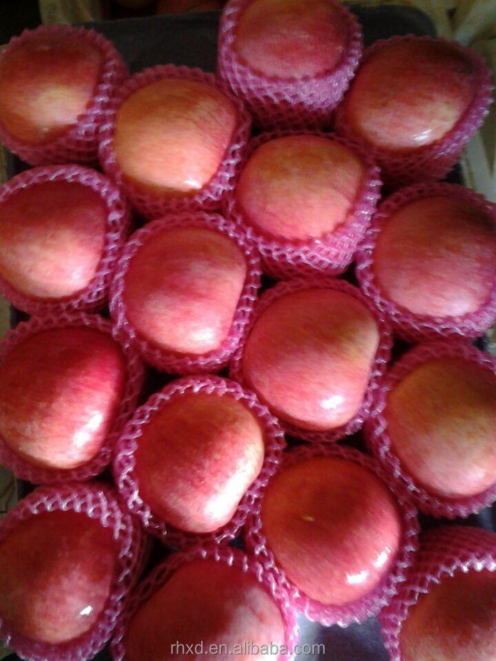 China Fuji Apple Exporter/king Supplier In Shandong China