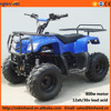 Factory outlets 4 wheel 800w motor 36v 12ah battery Quad bike