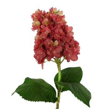33coral cone hydrangea flowersilk hydrangea flowerbulk artificial 33quotcoral cone hydrangea flower silk hydrangea flower bulk artificial hydrangea flower mightylinksfo